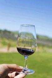 Adelaide Wine Tours