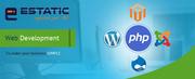 Web Development Company in Adelaide |Estatic Infotech