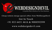 Customized Website Designing $8 Per Page