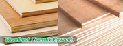 Plywood Suppliers in Chennai