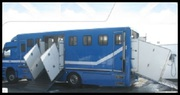 Horse Transport Services in Victoria