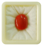 Italian Red Coral Stone For Jewelry & Astrology At 9Gem