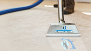 Carpet Cleaning Service – To Clean Your Carpet Dust Free