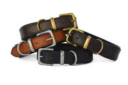 Find Wide & Heavy Duty Dog Collars in Australia