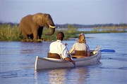 AGAMA TOURS AND SAFARIS