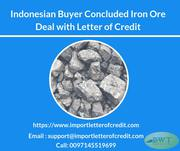 Indonesian Buyer Concluded IronOre Deal with MT700